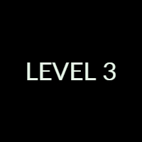 Level 3 Exam